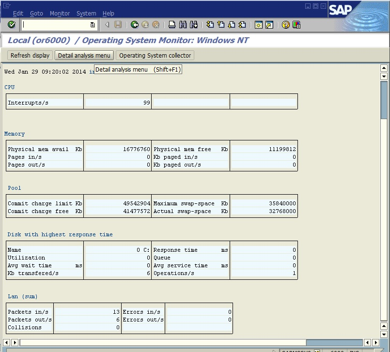 PING Operation Over the SAP System