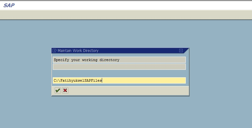 SO21 - SAP Working Directory