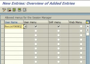 SAPGui SAP Menu and User Menu 03