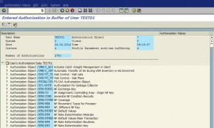 List or Reset SAP User's Buffer Area 05