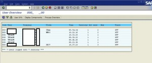 list terminalID for SAP logged users