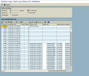 REDO LOG Informations on SAP