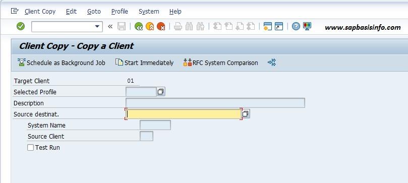 SAP Remote Client Copy