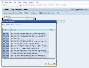 SAP Remote Client Copy
