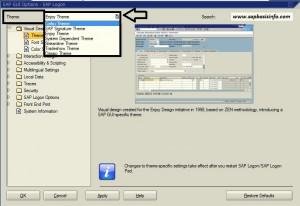 Change SAP Theme