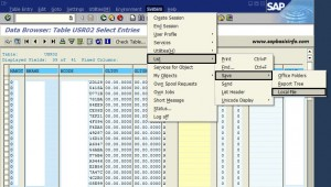 Export data from SAP screen to Excel , Word or HTML file