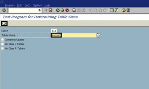 Determine SAP Table Size via Program RSTABLESIZE