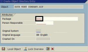 SAP Object Cannot be Assigned to Package