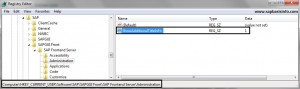 Additional information in the SAP GUI window title