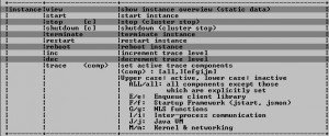 SAP Java system availability using JSMON