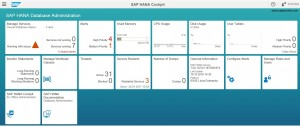 SAP HANA Offline Cockpit