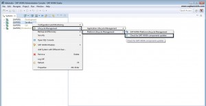 Check for SAP HANA Components Updates