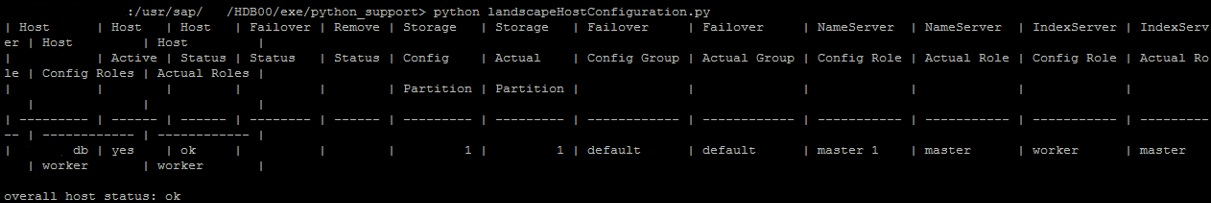Useful Python Scripts for HANA | SAPBASISINFO
