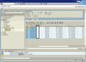 DB Statistics on ORACLE Databases - RTCCTOOL Error for DVM