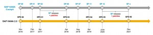 SAP HANA 2.0 Revision Strategy